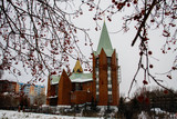 Roman Catholic Church of the Immaculate Conception of the Blessed Virgin Mary in Chelyabinsk - 208430476