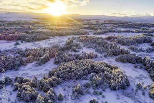 Foto Murales sunrise over winter forest