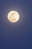 Full moon in a blue twilight sky