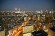 Fototapeta Tokio - Budynek -