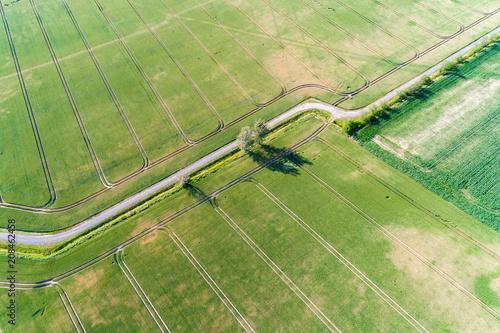 Fotobehang Lente Large green field