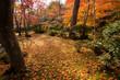 京都 大河内山荘庭園の紅葉 - 208463463