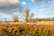 Leinwanddruck Bild - Dutch nature reserve during sunset