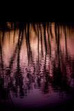 Spiegelung im See - 208476693
