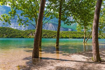 Bäume am Ufer des Lago di Cavedine, Arco, Gardasee, Trentino, Italien © driendl