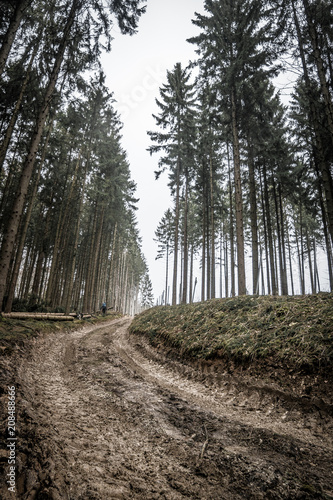 Fototapeta samoprzylepna Landschaft des Teutoburger Wald