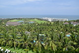 coconut plant and pool at resort in muine, vietnam - 208493017