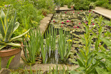 Waterlines on a pond at Hidcote Manor Garden, Chipping Campden, Gloucestershire. United Kingdom - 208513672