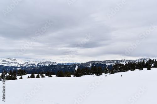 Foto Murales montagne