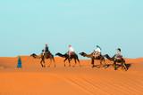 Camel caravan going through the sand dunes in the Sahara Desert. Morocco Africa. Beautiful sand dunes in the Sahara desert. - 208524447