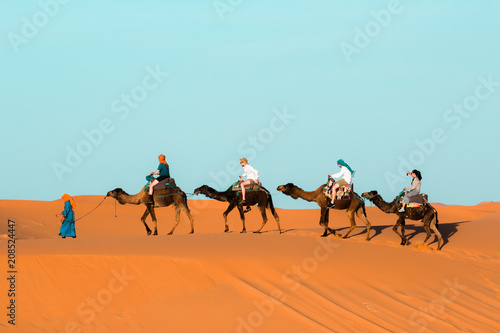 Fotobehang Kameel Camel caravan going through the sand dunes in the Sahara Desert. Morocco Africa. Beautiful sand dunes in the Sahara desert.