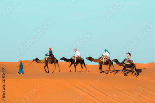 Camel caravan going through the sand dunes in the Sahara Desert. Morocco Africa. Beautiful sand dunes in the Sahara desert.