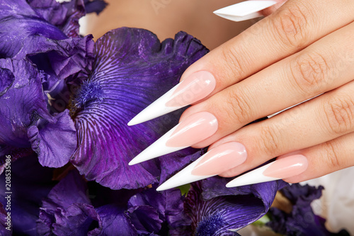 Aluminium Manicure Hand with long artificial french manicured nails and a purple Iris flower