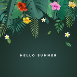 Hello summer vector illustration for background, mobile and social media banner, summertime card, party invitation template. Lettering summer concept with natural elements. - 208542881
