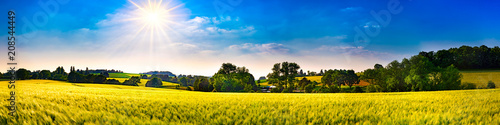 Foto Spatwand Oranje Panorama of a landscape with fields, meadows, trees and sun