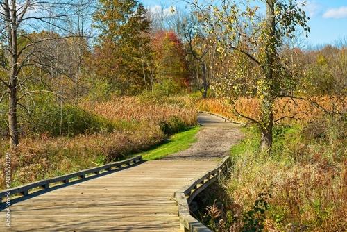 Fotobehang Herfst Boardwalk trail in autumn meadow