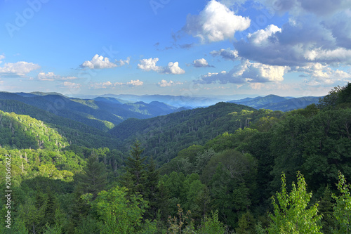 View of the Smoky Mountains - 208560622