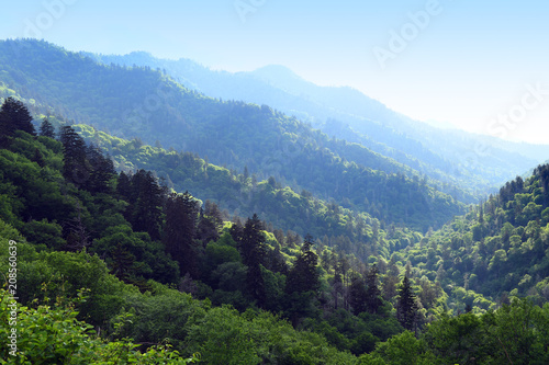 Late Afternoon View of the Smoky Mountains - 208560639