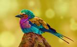 яркая птица  - 208564477