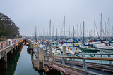 Misty Morning at South Beach Harbor  - 208566426