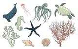 Hand drawn sea life set, vector