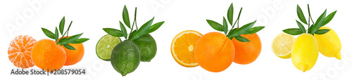 Collage of fresh citrus isolated on white background with clipping path - 208579054