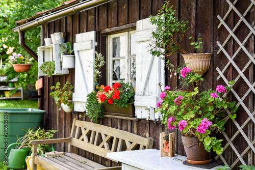 Wall mural Ein Garten mit Hütte mit Blumen im Sommer