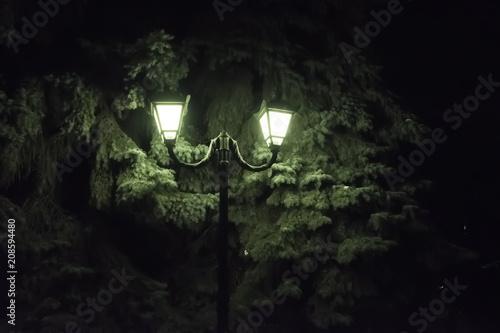 Foto Murales Светящийся фонарь в парке