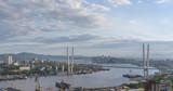 Vladivostok cityscape daylight view. - 208594855