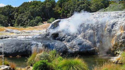 Geyser in Rotorua, New Zealand - 208615067
