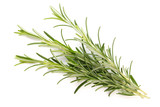 Rosemary spice on the white background. - 208625828