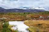 Norwegen - 208630610