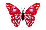 Beautiful red colored  butterfly