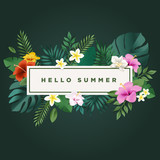 Hello summer vector illustration for background, mobile and social media banner, summertime card, party invitation template. Lettering summer concept with natural elements. - 208660043
