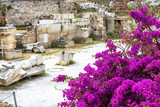 Flowers on the ruins of Library of Hadrian, Athens