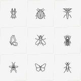 Insects line icon set with mosquito , beetle and butterfly