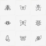 Insects line icon set with fly, bug and butterfly