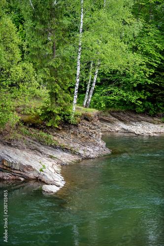 Fotobehang Bergrivier Mountain forest river landscape