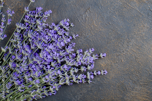Fotobehang Lavendel Fresh lavender on dark background
