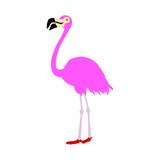 Pink flamingo vector illustration isolated on white background.