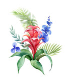 Watercolor vector bouquet tropical leaves and bright exotic flowers isolated on white background. - 208741616