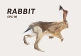 Rabbit of triangles. Lowe poly rabbit. Vector illustration.