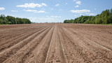 ploughed field with furrows - 208752847