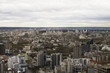 panorama of Ekaterinburg from aerial photography - 208755082