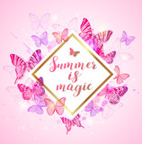 Summer background with pink and violet butterflies.