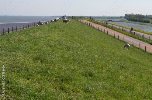 Dutch dike at the isle of Texel. Netherlands. Wadden Sea