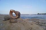 Seashell and sea waves on beach - 208797814