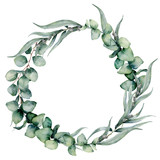 Watercolor floral wreath with different eucalyptus leaves. Hand painted wreath with baby blue, siver dollar eucalyptus isolated on white background. Floral illustration for design, print, background. - 208798846