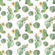succulents in watercolor - 208804294