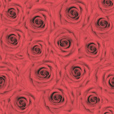 Seamless pink roses background. Abstract flowers backdrop - 208805685